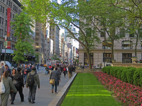 New York City Weather Information - Average Temperatures